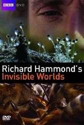 Thế Giới Vô Hình của Richard Hammond